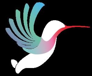 logo-lignt-sb-copie